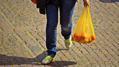Photo of Querétaro prohíbe el uso de bolsas de plástico