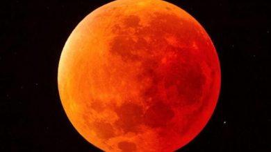 Photo of Mira qué bonita está la Luna: primer eclipse del año