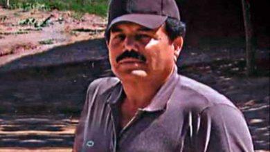 Photo of Jefe de la DEA: «El Mayo es el sustituto de El Chapo»