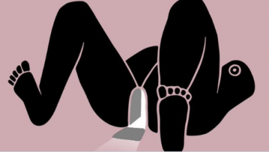 Photo of Pussypedia: la enciclopedia de la sexualidad femenina