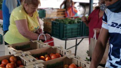 Photo of Agricultores de Silao hacen tiendita móvil para vender sus productos
