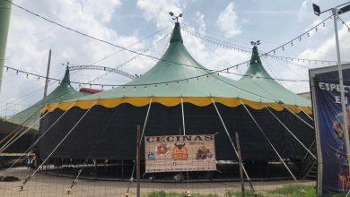 Photo of Cirqueros venden aguas para sobrevivir; Circo del Miedo está parado