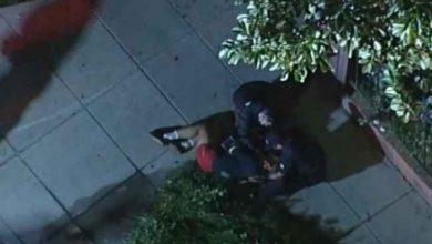 Photo of Un herido en el robo a tiros de los perros de Lady Gaga