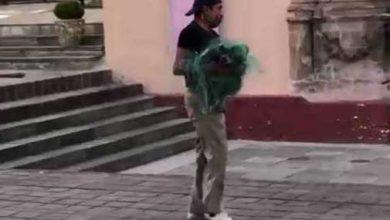 Photo of Se busca al 'cazapalomas' de Guanajuato