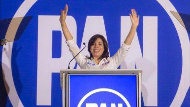 Photo of Empieza la carrera electoral para diputados federales