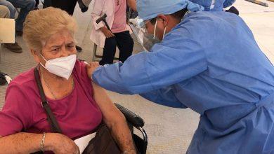 Photo of Ya está vacunado el 42% de los adultos mayores de GTO