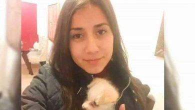 Photo of Hallan con vida a Cinthya Saraí tras 4 días de búsqueda